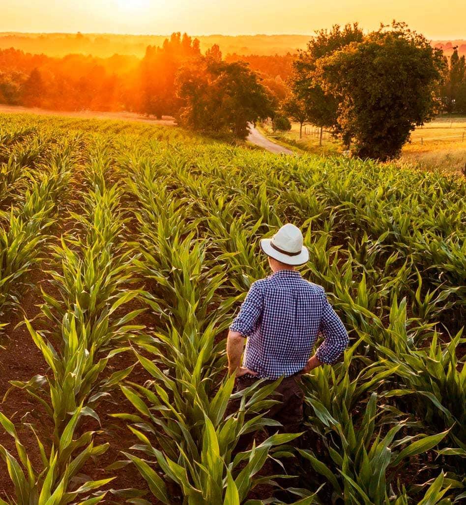 expertos en derecho agrario en Córdoba